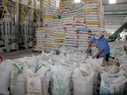 2015年越南大米出口量有望达680万吨