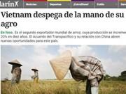 阿根廷媒体称赞越南农业发展成就