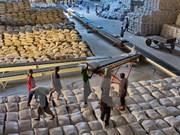 安江省:大米出口量有望超额完成全年计划