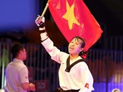 2015年跆拳道国际锦标赛:越南选手张氏金玄夺金