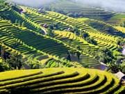 越南河江省—东南亚颇具吸引力的旅游线路之一