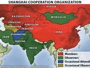 东盟与上海合作组织加强合作关系