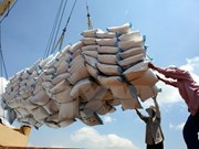 印尼将从越南进口100万吨大米