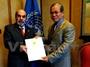 联合国粮农组织总干事:越南在南南合作具有许多优势