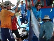 越南金枪鱼价值链商业模式收效不大