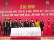 越南农林水产品电子商务展销会正式开展