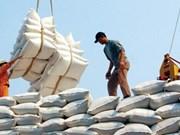 越南大米出口量达600万吨以上