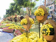 2015年胡志明市接待国际游客量达470万人次