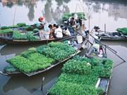 2015年后江省接待游客量达20万人次