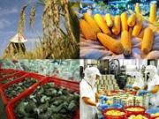2015年越南出口额降至5年来最低水平