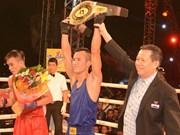 2015年Let's Viet冠军杯拳击和传统武术比赛决赛落幕