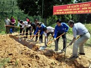 """胡志明市举行""""志愿者之春""""活动 吸引当地3.1万名大学生参加"""