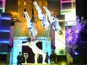 2016年国际杂技艺术节在河内举行