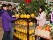 2016年平顺省丙申春节展销会正式开展