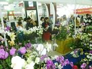 2016丙申春节活动在全国各地开展