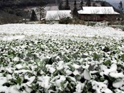 """""""温暖冬衣""""短信捐款活动启动为山区贫困同胞送温暖"""