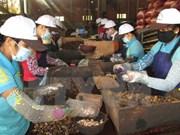 越南政府总理批准《越老贸易协定》执行计划