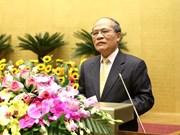 国会主席阮生雄:各级人民议会继续革新提高解决当地重要问题的效率
