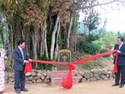 平定省怀恩县榕树荣获越南遗产树称号