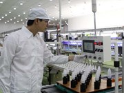 2015年胡志明市吸引外资总额居全国首位
