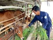 越南努力推动可持续减贫