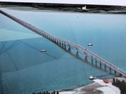 越南海防市新武—沥县跨海大桥施工进度超预期7%