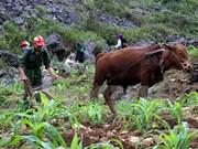 越南力争今年贫困户比例下降1.3%至1.5%