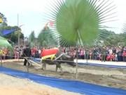 越南宣光省岱族同胞欢庆下田节