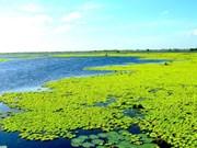幽冥上成为越南第八个拉姆萨尔湿地