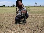 泰政府向受旱灾影响的农村地区提供优惠贷款