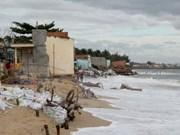 平顺省出资兴建海堤防止海岸侵蚀后退