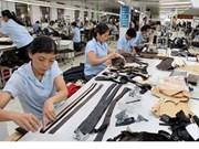 英国媒体:TPP有助于加大越南纺织品服装出口力度