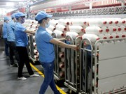 TPP为越南工业加快企业结构重组提供便利
