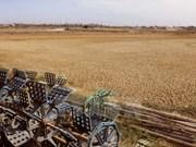 九龙江平原各省市加大抗旱和防治海水入侵工作力度