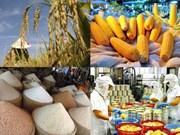 为越南农产品走向世界开辟大门:把信心交给商务处