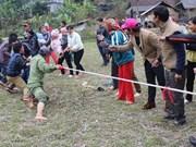 越南老街省沙巴县岱依族和热依族的拔河节