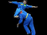 首届越南传统武术国际锦标赛即将举行吸引30个国家的运动员参赛