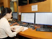 今年前两个月越南国库筹集28万亿越盾政府债卷