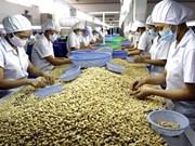 2016年前两个月越南腰果仁出口量达3.7万吨