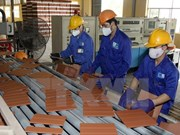Viglacera投建的工业区效果显著