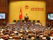 第十三届国会十一次会议:国会代表聚焦促进经济社会发展措施