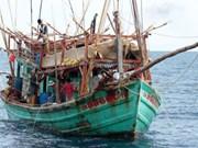 越南驻泰国大使馆对越南渔民进行公民保护工作