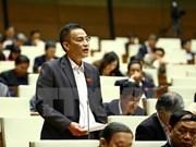 越南十三届国会第十一次会议:选民希望国会需更全面更好地进行革新