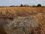 国际组织承诺协助越南应对气候变化影响