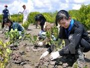 加强国际合作   有效执行环保法律法规