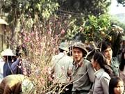 """法国摄影师""""20世纪80年代的越南""""图片展亮相河内"""