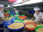 2015年越南企业年度报告:越南经营环境大有改善