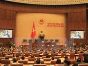 越南第十三届国会:责任、民主和印象深刻