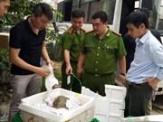 河内市职能力量查获大量走私中国商品