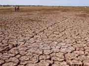 亚洲开发银行协助越南旱灾灾后重建